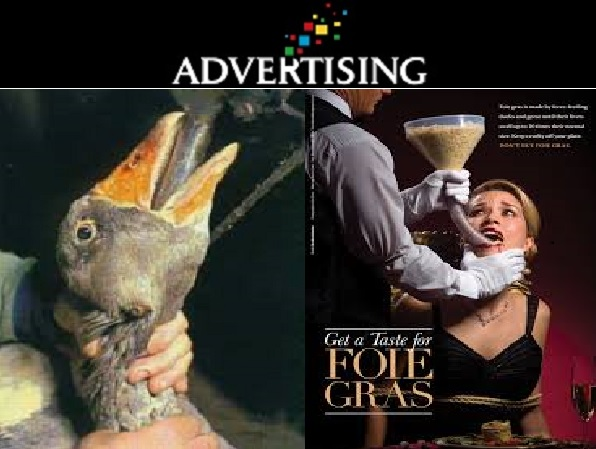Advertising Indigestion 596x449